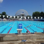 2014 FINA Masters World Swimming Championships Race Report