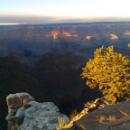 From Phoenix to the South Rim