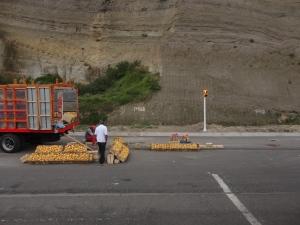 A roadside mango seller.