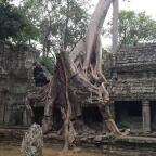 Angkor Wat & flying back to Thailand